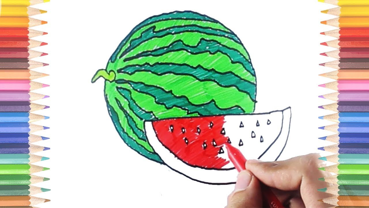 How to Draw and Color Watermelon Coloring Pages Preschool Education to Learn for Kids and Toddlers