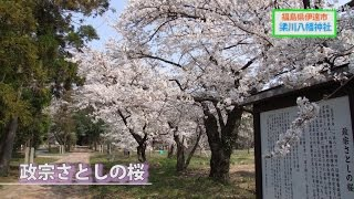 福島で味わう伊達な女子旅1(パワースポット編/伊達市)