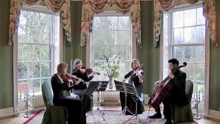 And I Love Her (The Beatles) Wedding String Quartet