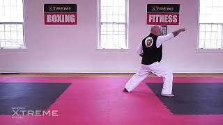 Kata 02.3 – White Belt – Taikyoku Nidan – Practice