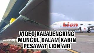 Viral Kalajengking Muncul di Kabin Pesawat, Lion Air Klarifikasi