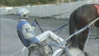 See What Really Happens Behind The Scenes Of A  Horse Race, You Will Be Surprised