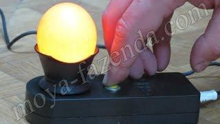 Светодиодный овоскоп для проверки яиц от компании «Моя Фазенда» - хозяйственные товары - видео
