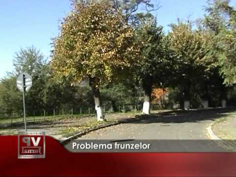 Problema frunzelor