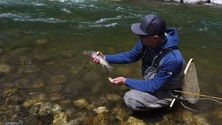Fly Fishing the Mountain Streams