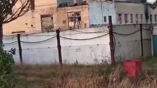 Под Киевом загорелась колония, внутри которой находится 500 заключенных. Видео