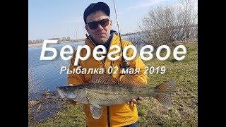 Береговой кемеровская область рыбалка платная или нет