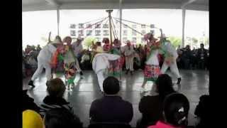 preview picture of video 'DANZA DE MATLACHINES BFT, 6º Encuentro de Huapango, Pachuca Hgo.'