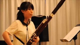 Hochschulabend Konzert: Fagott Klasse. Teil II