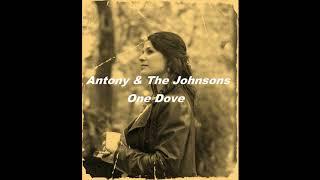 Antony & The Johnsons   One Dove