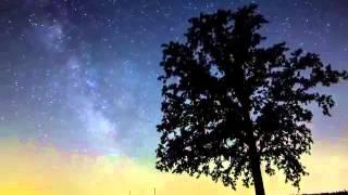 Armin Van Buuren & Richard Bedford - Love never came