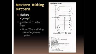 UNL Horse Judging - Judging Western riding