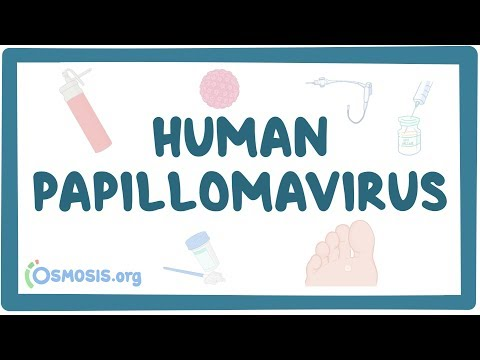 Human papillomavirus vaccine in french