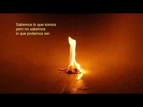 Enciende el fuego que llevas dentro  te ayudará a romper con tus miedos y pasar a la acción.