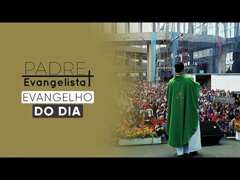 Evangelho do dia 28-07-2021 (Mt 13,44-46)