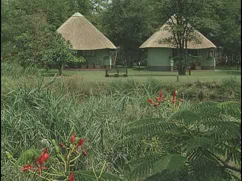 Holiday home Sefapane Lodge & Safaris