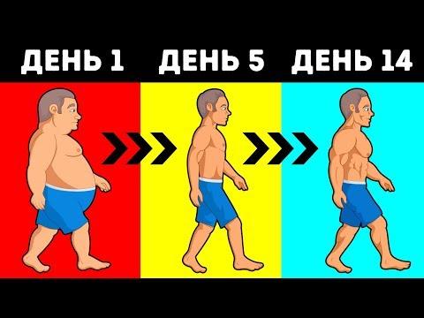Сколько Калорий Нужно Потреблять, Чтобы Сбросить вес?