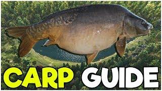 Fishing Planet TIPS! | Low Level Guide | Catch CARP! | Lesni Vila
