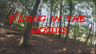 Flying in the woods - FPV - MaSe-Flight and DrFrantic77