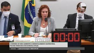 Meio Ambiente - Discussão e votação de propostas - 18/05/2021 09:00