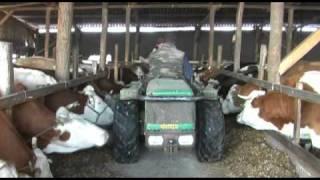 Házhoz jön a valódi tej – 1. rész