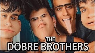 The Dobre Brothers roasted me