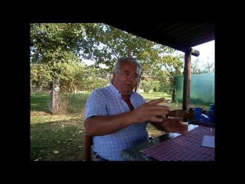 Comprare il caffè verde per perdita di peso in risposte di Ucraina