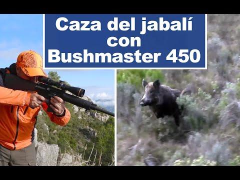 Caza del jabalí con el rifle Bushmaster 450
