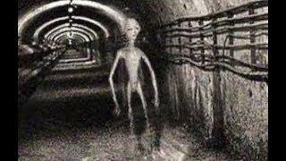 Вскрываются факты об НЛО о которых раньше  боялись говорить. Что скрывают Секретные подземные базы.
