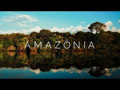 Viagem pela Floresta Amazônica