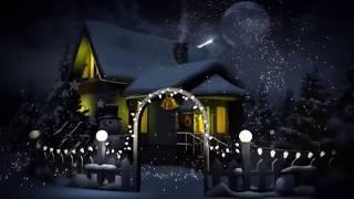 С Рождеством, дорогие травники!