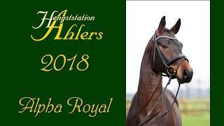 video of Alpha Royal
