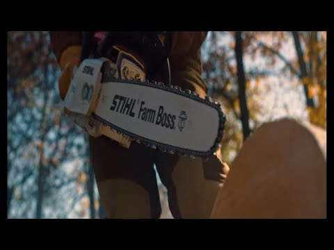 Stihl MS 271 Farm Boss in Mio, Michigan - Video 2