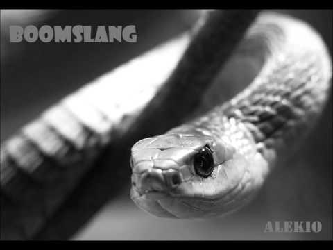 Alekio:- Boomslang