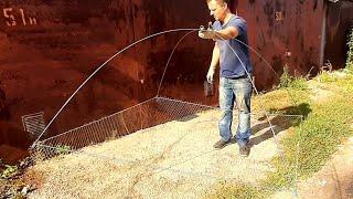Рыболовные пауки в тюмени