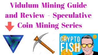 Vidulum Mining Guide and Review - Speculative Coin Mining Series