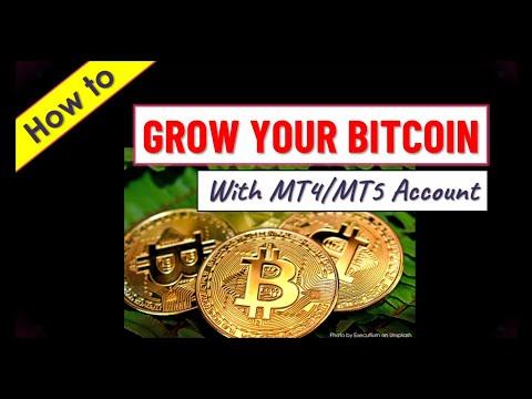 Bitcoin 5 metų diagrama