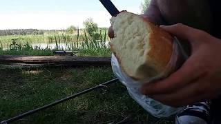 Как ловить амура на хлебную корку