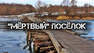 Геноцид русских в центральной России: репортаж из Курской области.
