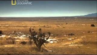 В поисках правды. НЛО / The Truth Behind. UFOs (2011) National Geographic