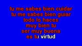 Jaguares   Te Lo Pido Por Favor Karaoke