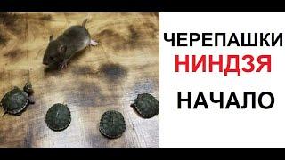Мои книги тут - Читай город https://www.chitai-gorod.ru/shops/reserve/?elem_id=2702334  Буквоед https://www.bookvoed.ru/book?id=9422850 Лабиринт https://www.labirint.ru/books/685907/ Бук 24 https://book24.ru/product/apokalipsis-5149410/  ОБЗОР НА КНИГУ https://www.youtube.com/watch?v=sBNeDP_UEn0&t=9s в УКРАИНУ https://book24.ua/product/apokalipsis_1/ в БЕЛАРУСЬ https://oz.by/books/more10802838.html?sbtoken=8825305aa19cf195ea8415cc06ea1a6d в КАЗАХСТАН https://www.flip.kz/catalog?prod=1329545 OZON https://www.ozon.ru/context/detail/id/149413352/ Электронные книги и аудио. ЛИТРЕС https://www.litres.ru/maks-maksimov/  По вопросам сотрудничества: maxmaximov@wildjam.ru