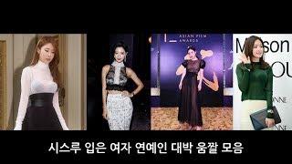 시스루 여자 연예인 움짤 대방출/Female Stars MeMe Compilation./ Nữ Minh Tinh Trong Bộ Sưu Tập Video Xem Qua