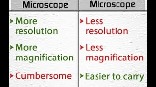 Light Microscope Vs  Electron Microscope