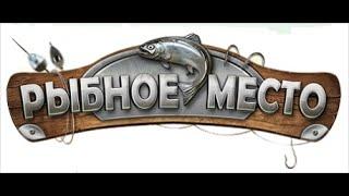 Рыбалка в михайлове рязанской области на месяц