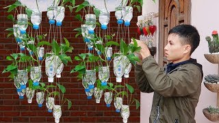 Amazing Vertical Hanging Garden Using Plastic Bottles, Very Easy And Cheap
