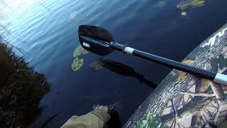 Озеро савельево переславский район рыбалка