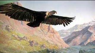 El Condor Pasa – Paul Simon & Garfunkel
