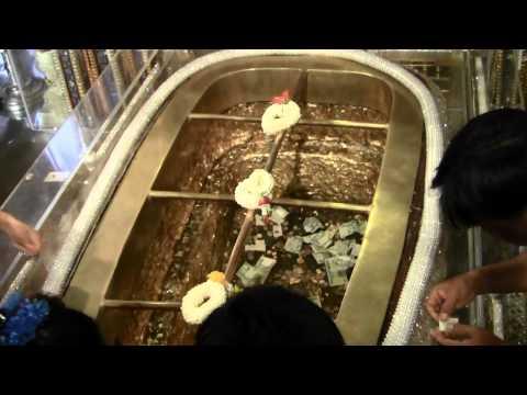ซีสต์ Giardia และภาพถ่าย