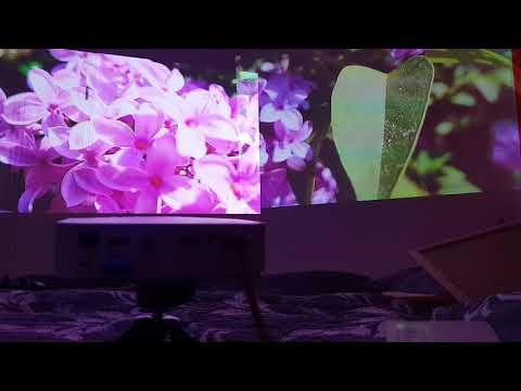 LG PH30JG 250 Lumen 720p vs. LG PF50K 600 Lumen 1080p Akku Projektoren im Vergleich